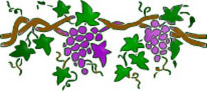 Clipart of vines and branches 1 » Clipart Station.