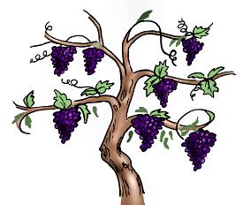 Branch clipart vine, Branch vine Transparent FREE for.