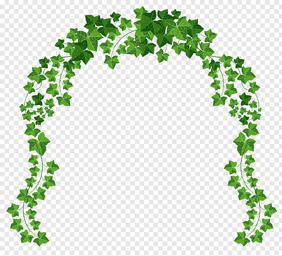 Animated green vines border, Arch, Vine Arch free png.