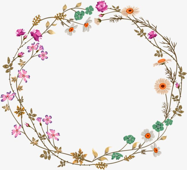 Colorful Simplicity Flower Vine Circle Border Texture.