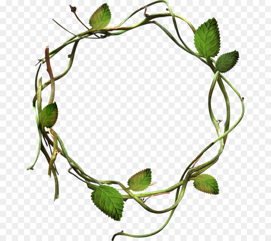 Leaf Circle clipart.