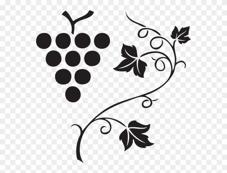 562 Grapes & Vine Clipart Images, Vector Clipart, Multiple.