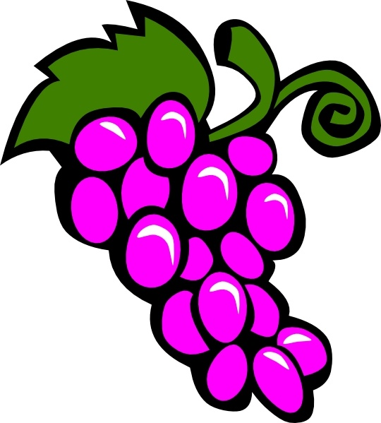 Grapes Vine clip art Free vector in Open office drawing svg.