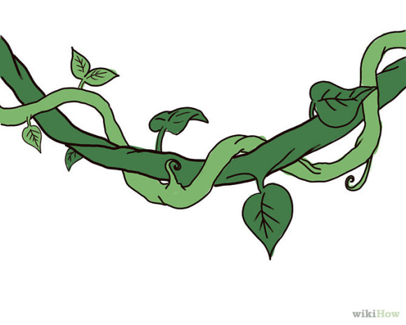 Jungle Vines Clip Art.