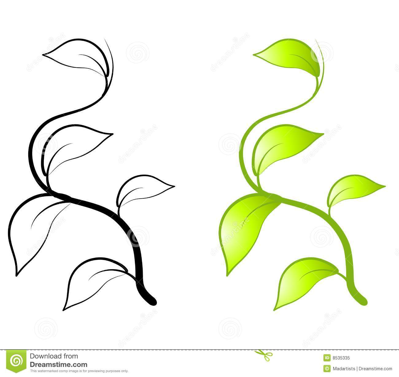 Leaf Vine Clipart Black And White.