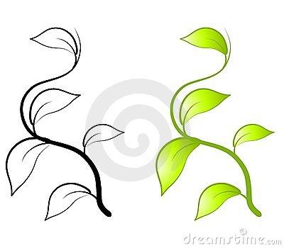 Pumpkin Vine Leaf Clipart.