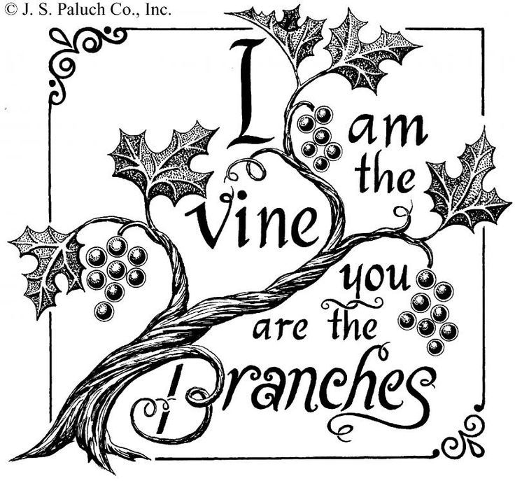 i am the vine you are the branches clip art.