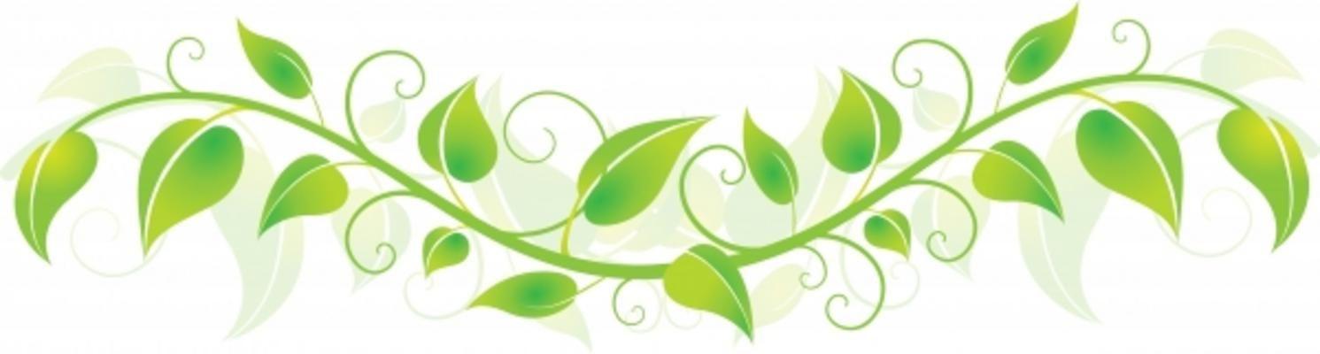 vine in the jungle clip art.