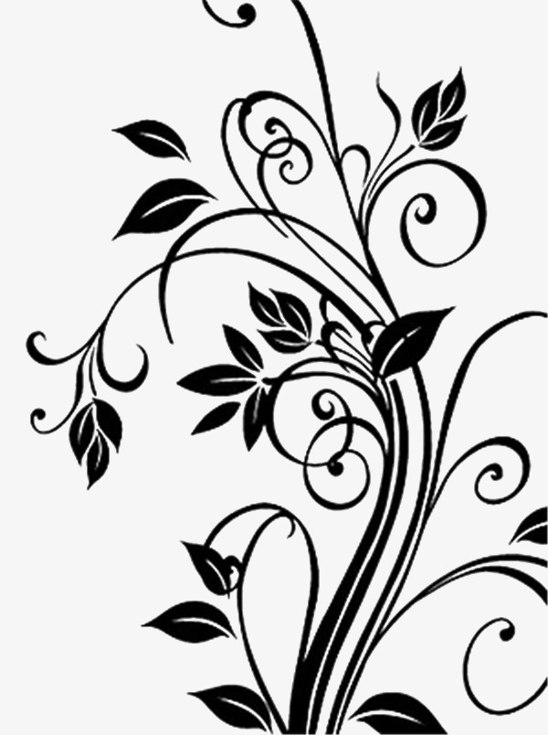 Free Vine Black And White Png & Free Vine Black And White.