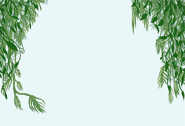 Hanging Jungle Vine Clipart.
