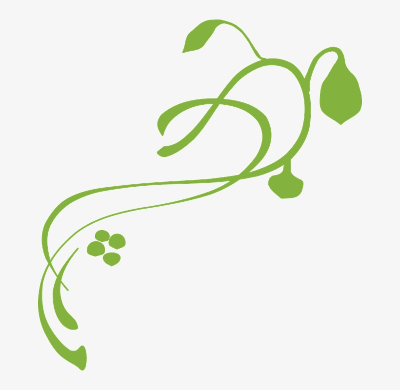 Vine Green Free Vector Graphic On Pixabay.