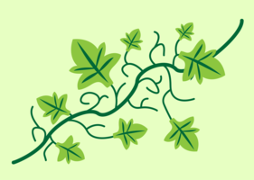 Vine Free Vector Art.