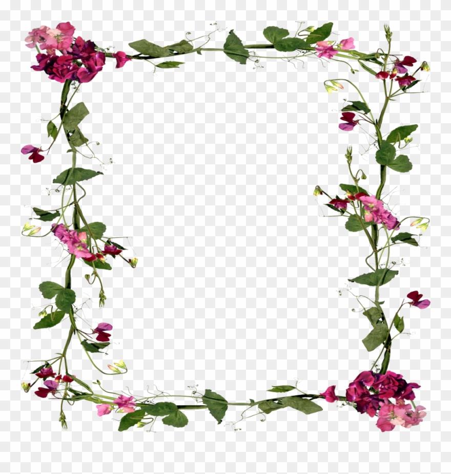 Mq Flowers Vines Border Frame Frames Clipart (#2356173.