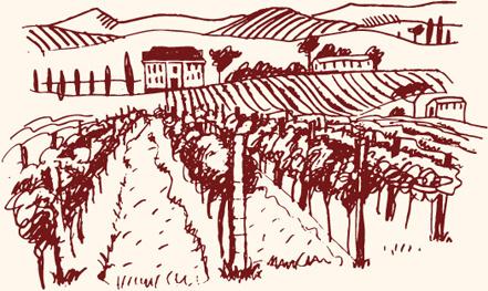Vineyard Clipart Vector Clipground
