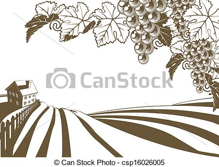 Vineyards Illustrations and Stock Art. 5,084 Vineyards.