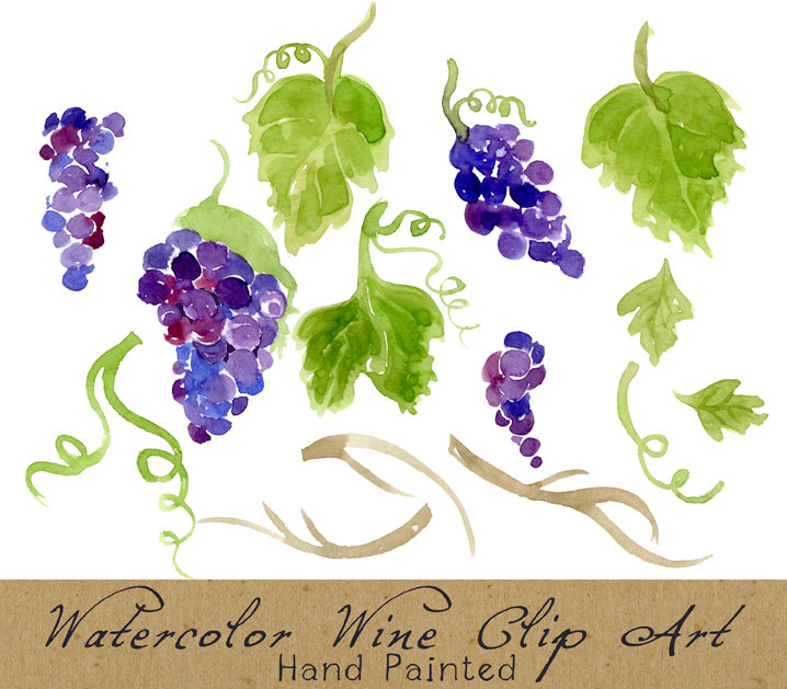 Watercolor grapes.