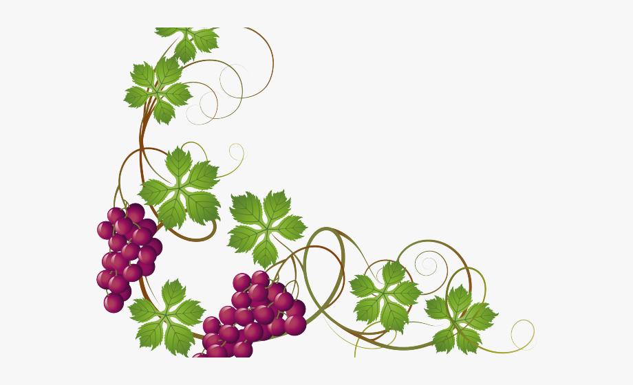 Vineyard Clipart Grape Leave.