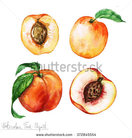 Nectarine Trees Stock Photos, Royalty.