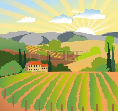 81 Vineyard Sunset Stock Illustrations, Cliparts And Royalty Free.