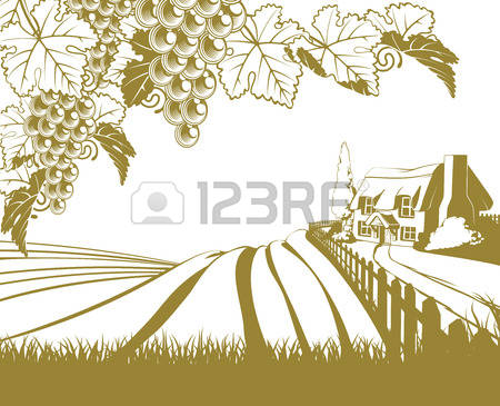 8,229 Vineyard Stock Illustrations, Cliparts And Royalty Free.