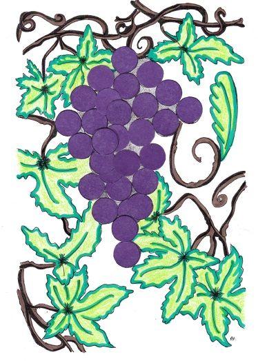 17 Best ideas about The Vineyard on Pinterest.