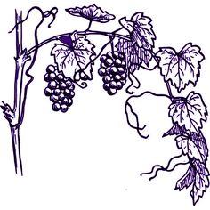 Tuscan clipart wine art.