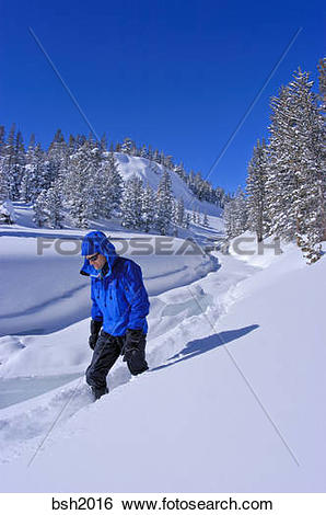 Stock Images of Backcountry skier in fresh snow along frozen Lee.
