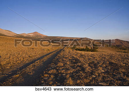 Stock Photo of A jeep trail in the Sierra mountains at sunrise.