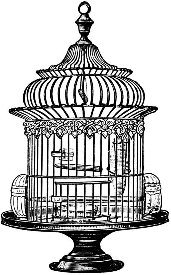 Free Vintage Bird Cage Clip Art.