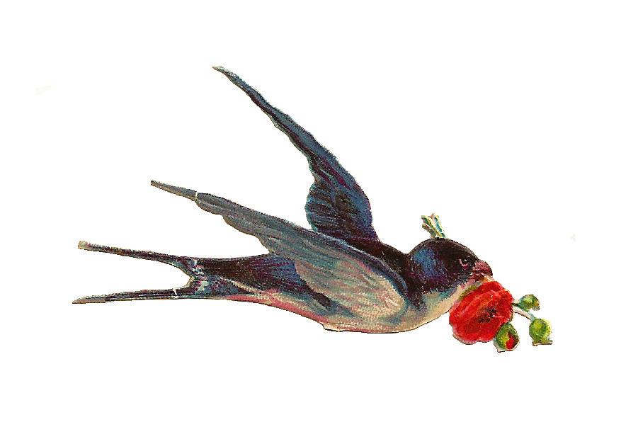 Free Bird Graphic, Download Free Clip Art, Free Clip Art on.