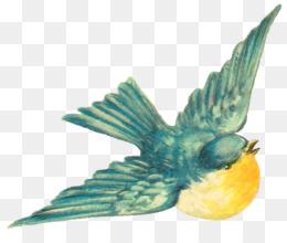 Vintage Bird PNG and Vintage Bird Transparent Clipart Free.