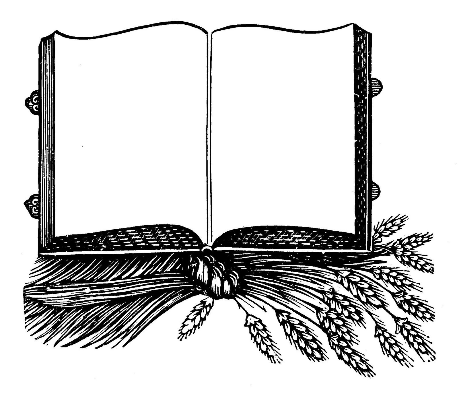 Book Frames Clipart And.