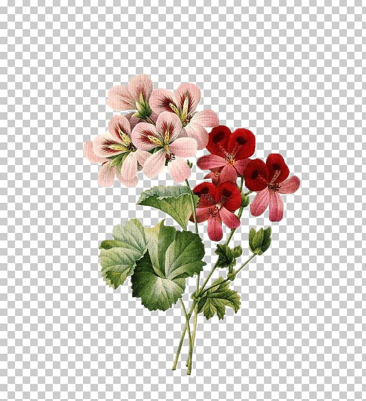 Flower Bouquet Vintage Clothing Floral Design PNG, Clipart.