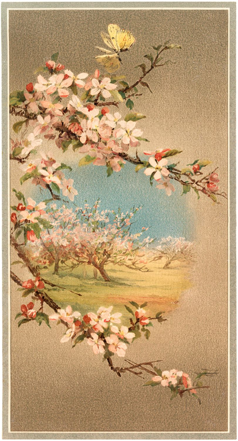 Free Flowering Branches Clip Art!.