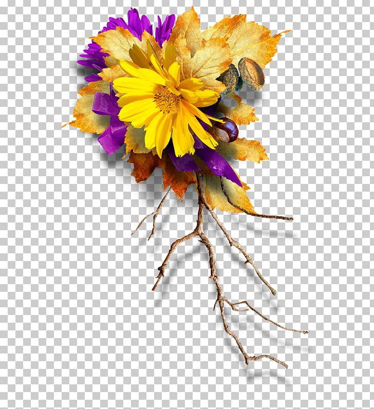 Flower Petal Floral Design PNG, Clipart, Branch.