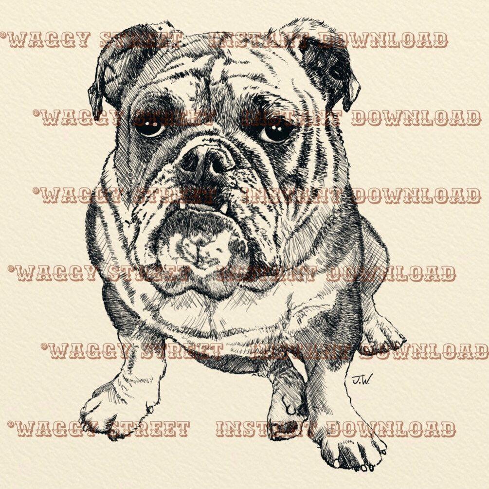 Sublimation designs downloads bulldog. Digital clip art. Dog.