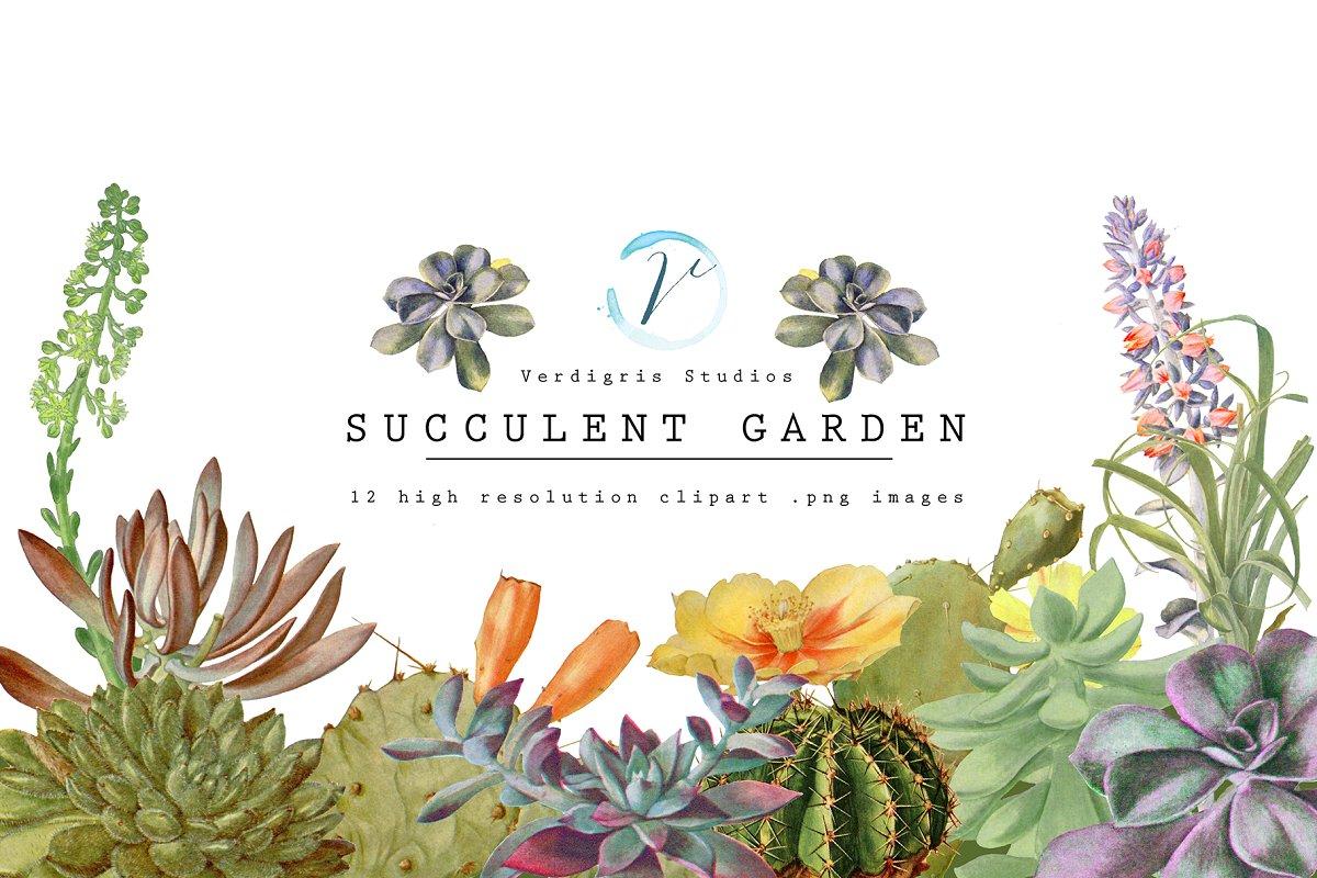 Vintage Succulent and Cactus Clipart.