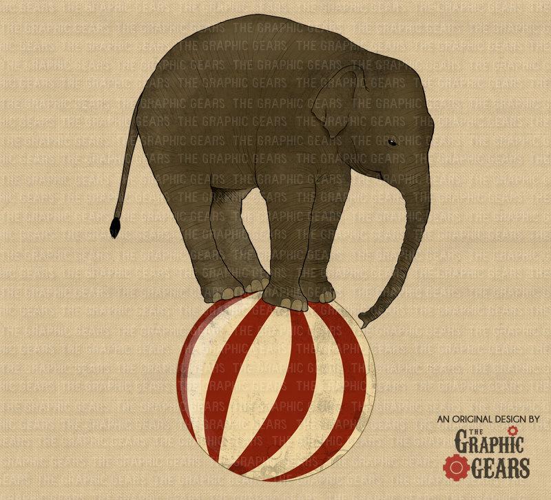 vintage circus elephant on a ball.