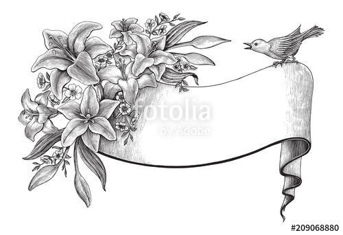 Lily flowers hand drawing vintage clip art with banner and.