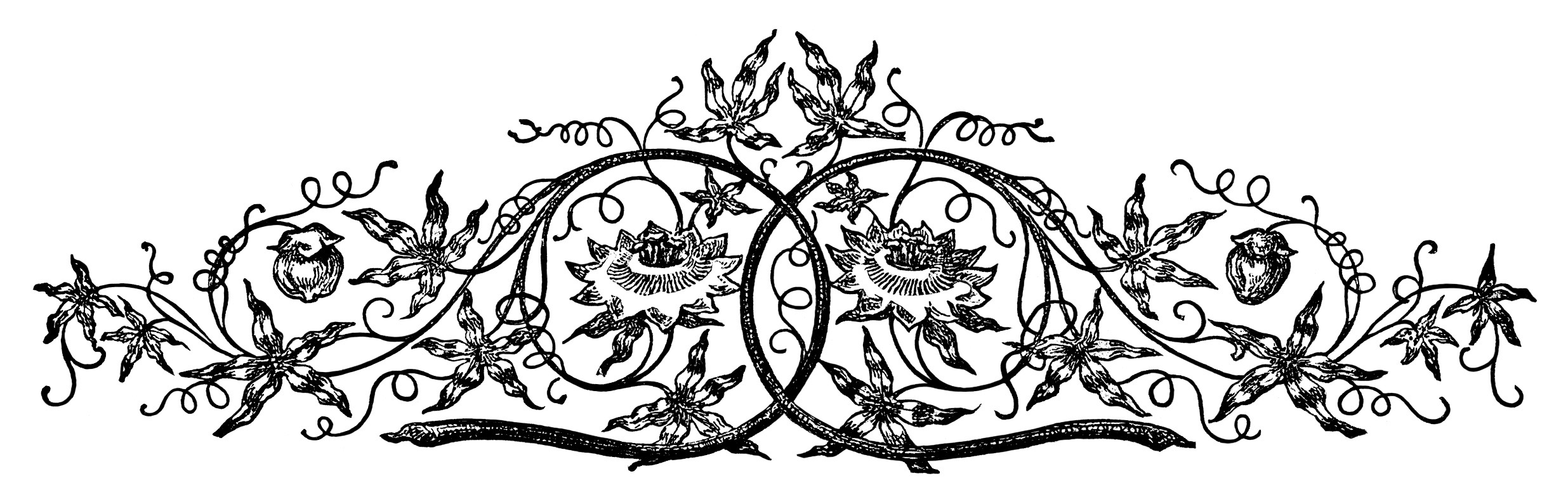 Ornamental Swirl Design ~ Free Vintage Clip Art.