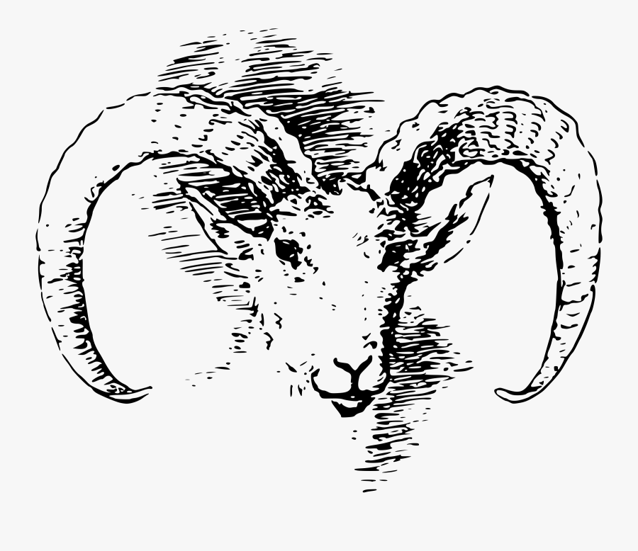 Transparent Lamb Head Clipart.