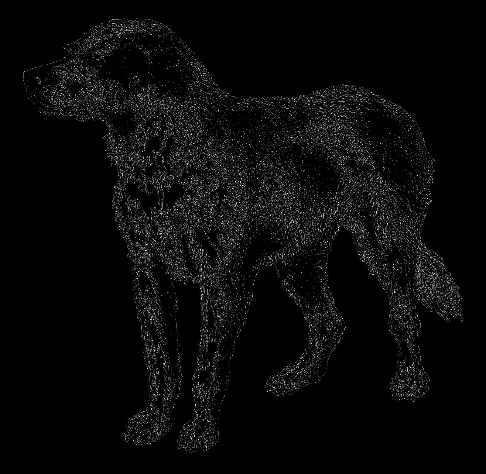 Antique Images: Vintage Dog Breed Boarhound Digital Download.