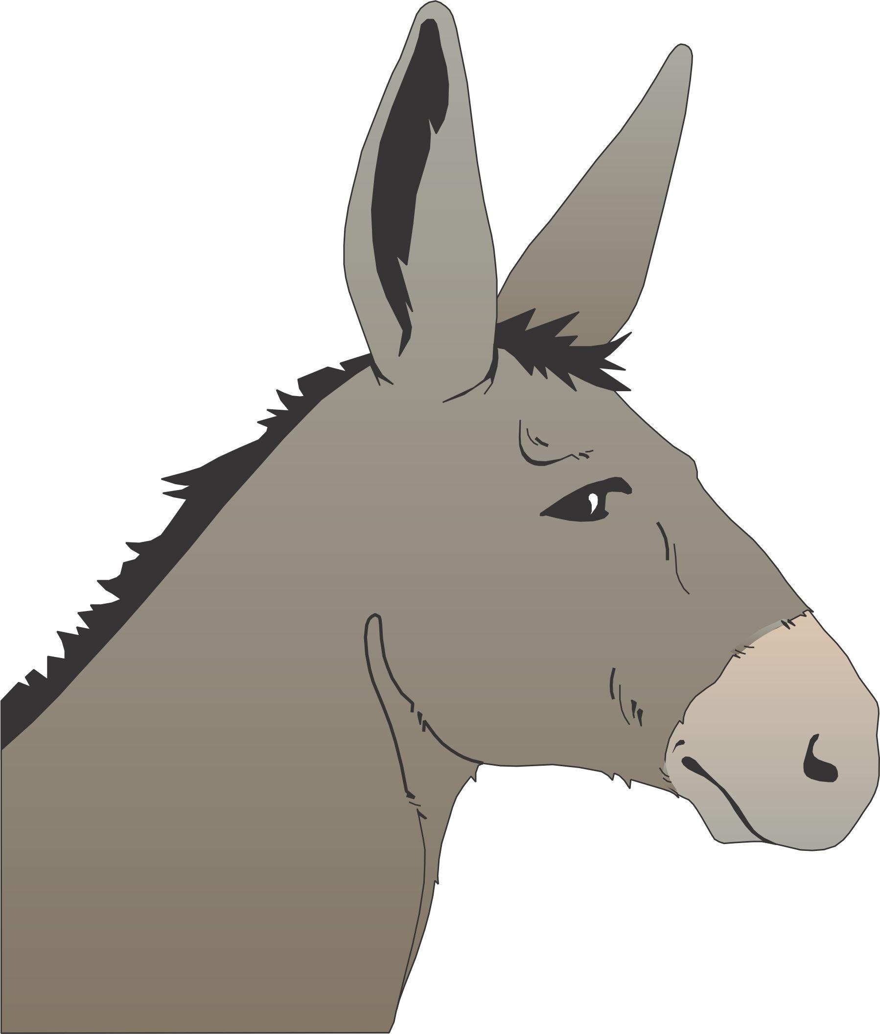Resultado de imagen para drawing donkey head in 2019.