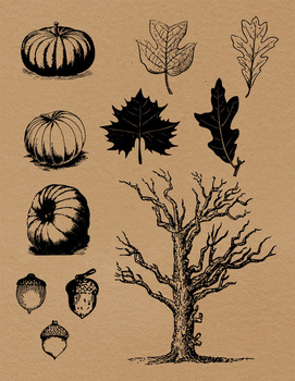 Vintage Fall Clipart, Autumn Clipart, Pumpkin, Fall Leaves, Forest,  Halloween.