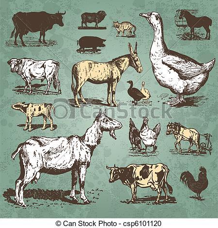 Farm Animals Vintage Set (Vector) Vector.