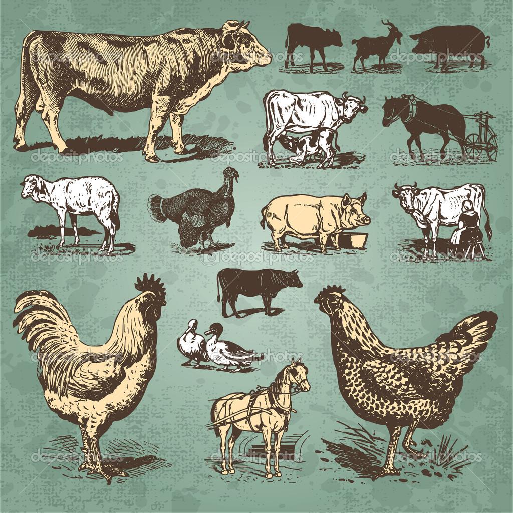 vintage farm image, milking time poem, black and white clipart.