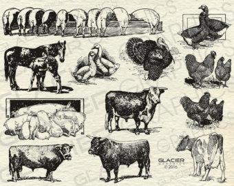 3 Barn Illustrations Vintage Barn Clipart Vector Copyright.
