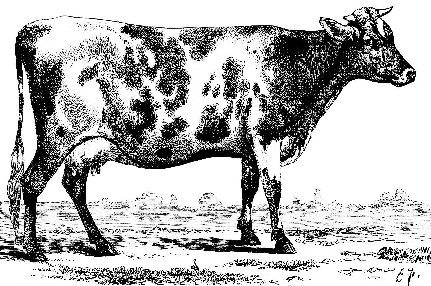Free Vintage Farm Cliparts, Download Free Clip Art, Free.