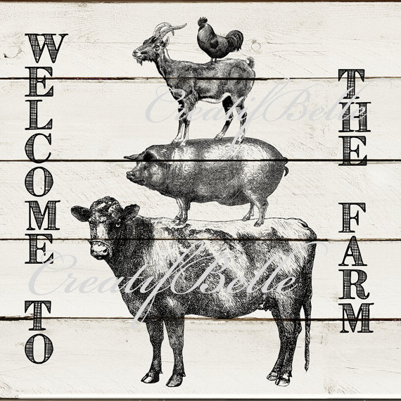 12x12 inch Vintage Farm Animal Stack on White Wood Instant.
