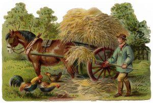 victorian clip art, vintage farm clipart, farmer stooking.